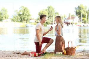 הצעת נישואין בפיקניק